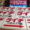 ライチ直売所案内サイン(ミキファーム)