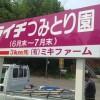 ライチつみとり園(高鍋町)