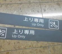 フロア表示シート(宮崎空港)