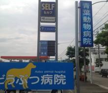 青葉動物病院(宮崎市)
