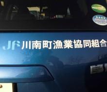ワンポイントマーキング(川南漁業協同組合)
