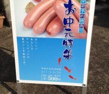 夏のゲシュマックサイン(川南町)