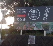 農業生産法人(株)伸昊(西都市)