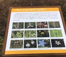 川南湿原サイン(川南町)