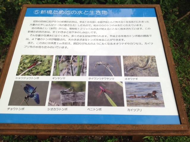 川南湿原②